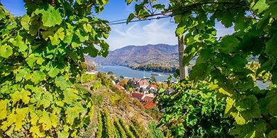 Niederösterreich ist das grösste Bundesland von Österreich - tagen Sie hier!