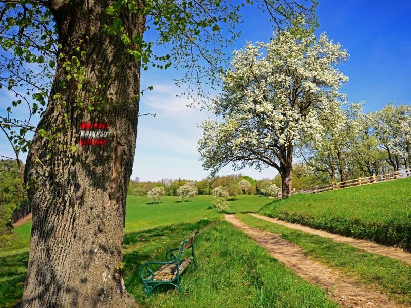 Wienerwald – Tagungen, Incentives & Rahmenprogramme